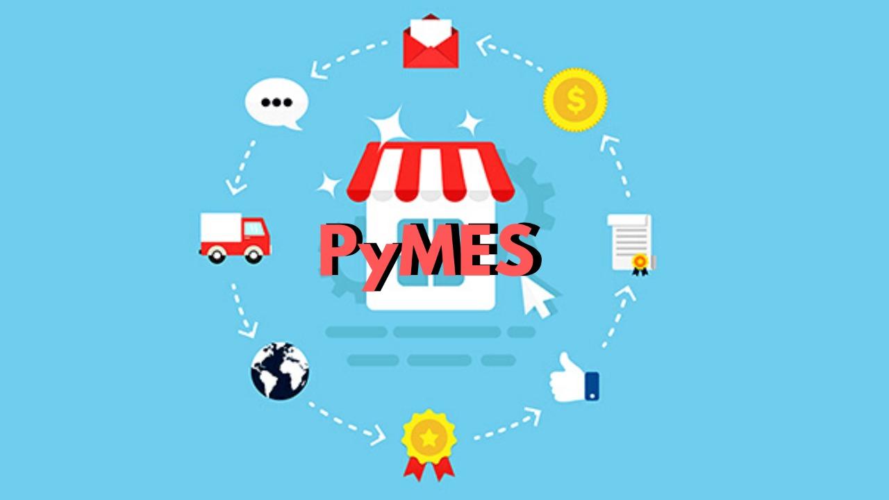 diferencia entre mype y pyme